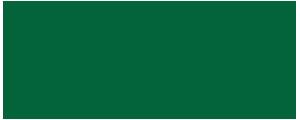 Alpine FX Footer Logo